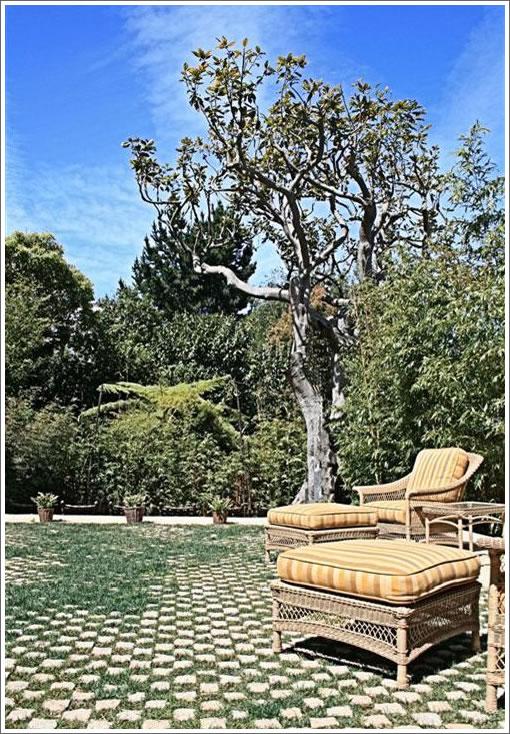 3444 Washington: Backyard