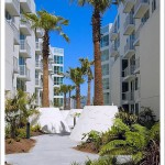 Fronds To Fronds For A Few One-Bedrooms At The Palms (555 4th)