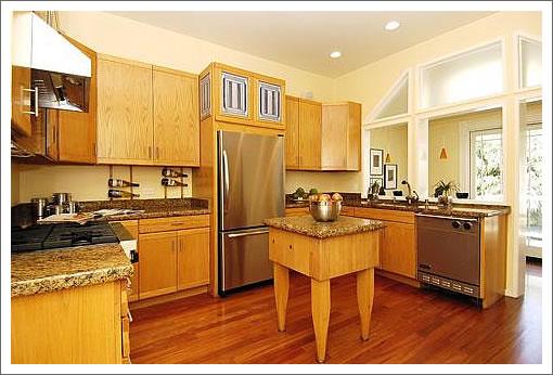1461 Sanchez Kitchen 2006