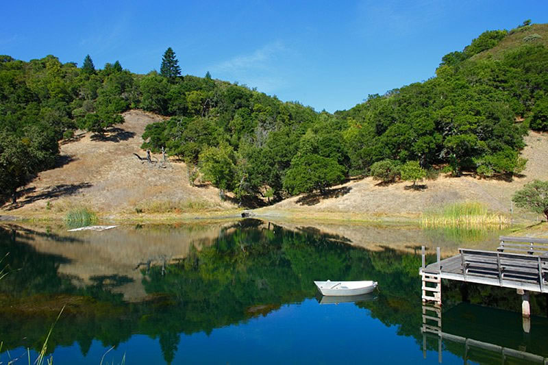 1100 Wall Road, Sonoma - Pond