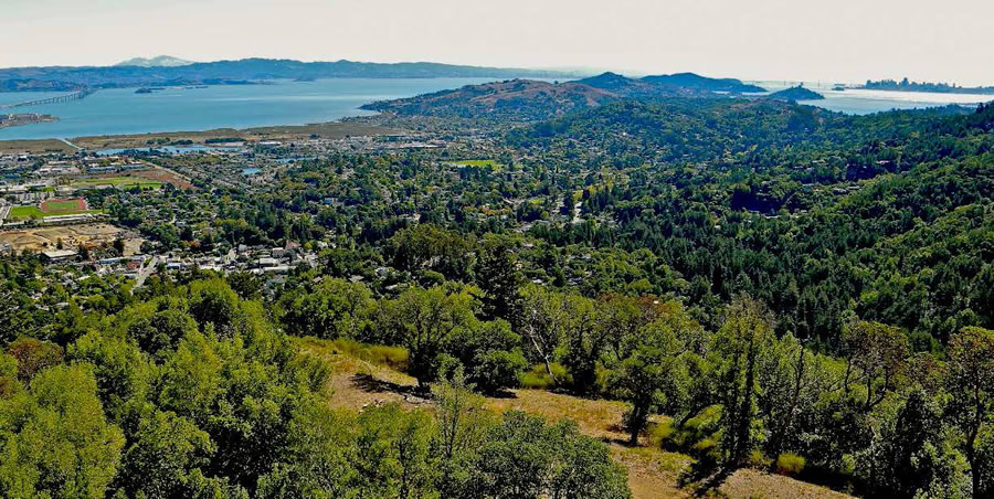 Plans For A 34,000-Square-Foot Villa In Marin