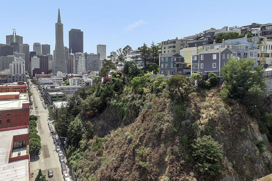 Ambitious Plans for Prominent Chunk of Telegraph Hill Revealed