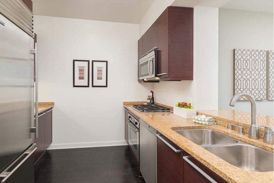 425 1st Street #4905 Kitchen